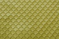 Sprint  Olive Green