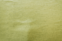 Sand Texture Olive Green